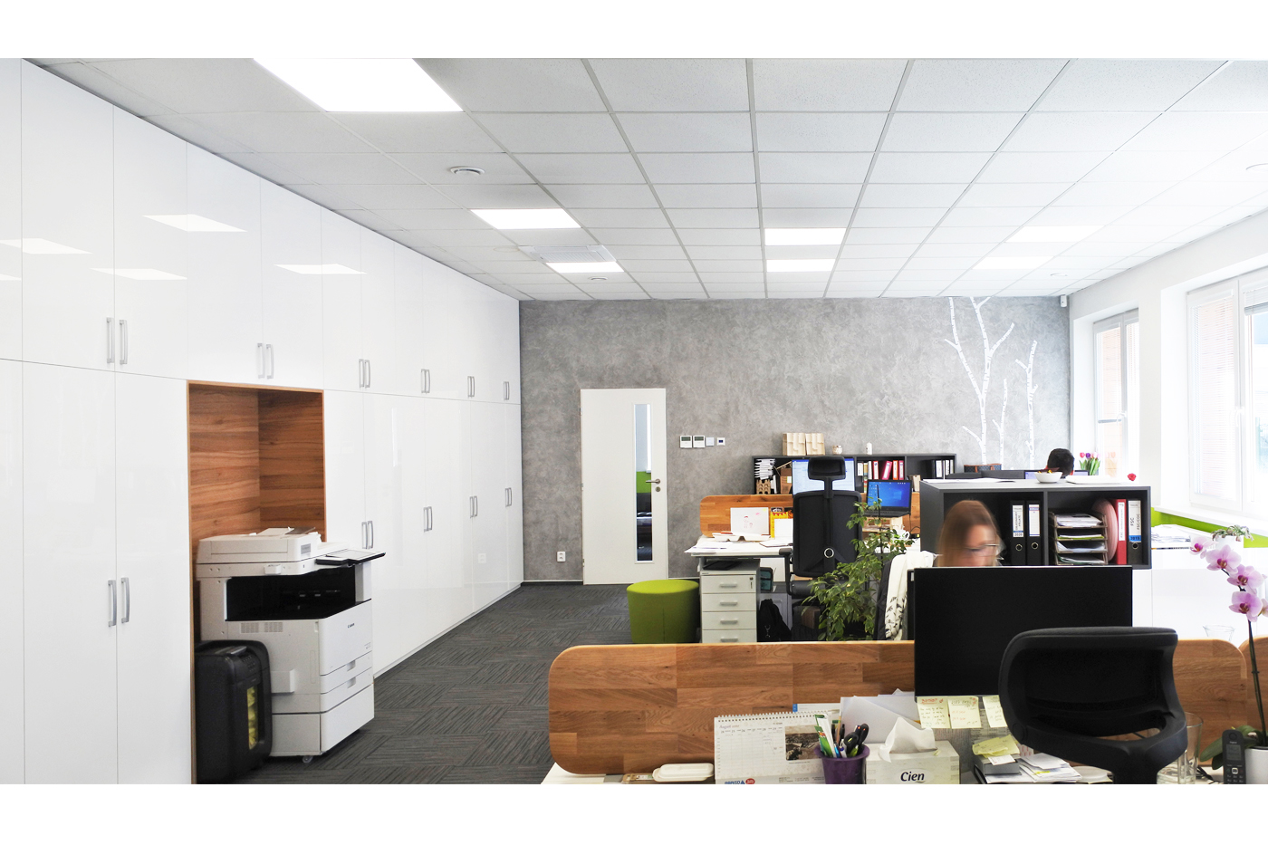 Celým prostorem prostupují materiály bílý lesk, betonová stěrka, dřevo a grafika stylizovaných bříz.